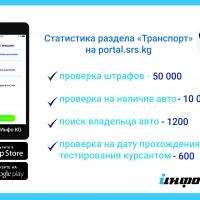 За 8 дней пятьдесят тысяч пользователей проверили наличие штрафов за нарушение ПДД