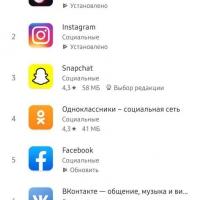 «Услуги ГРС» занимает 7 место наряду с TikTok, Facebook и Instagram